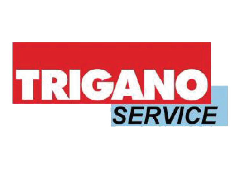 logo trigano service_Plan de travail 1